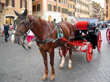 ローマ_スペイン広場