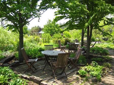 木陰のテーブル