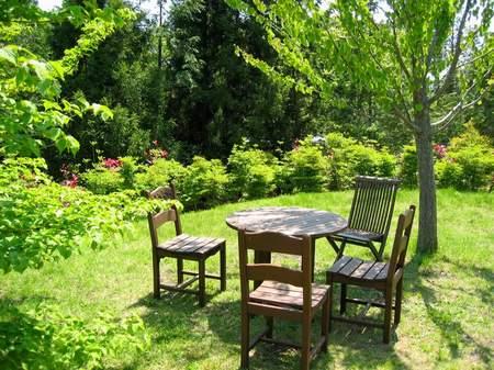 緑の中のテーブル