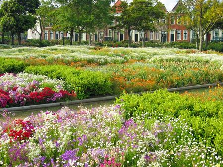 ハウステンボス_アートガーデンの花畑