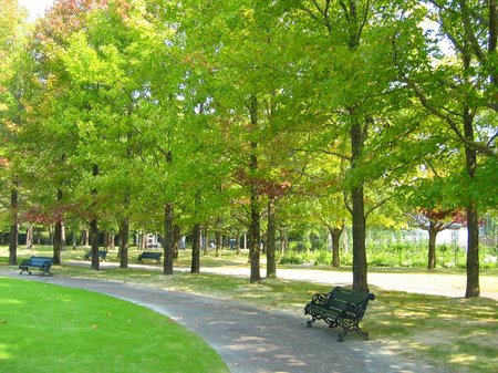 秋めくパレスハウステンボス前庭
