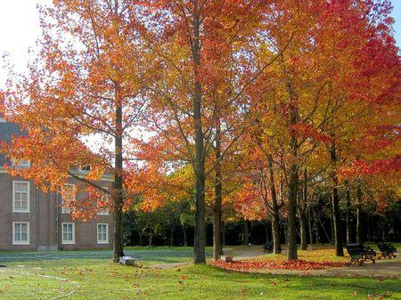 パレスハウステンボス前庭の紅葉