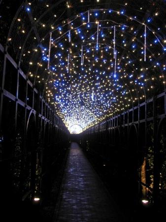 「光の街」ハウステンボス_光の回廊