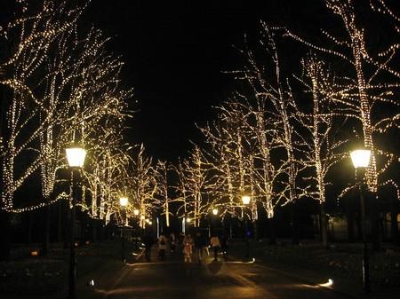 「光の街」ハウステンボス_光の並木道