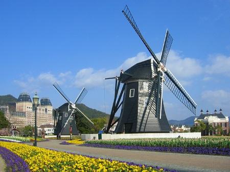 ハウステンボス_キンデルダイクの風車と花畑