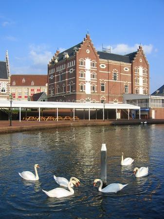 ハウステンボス_シンゲル運河の白鳥