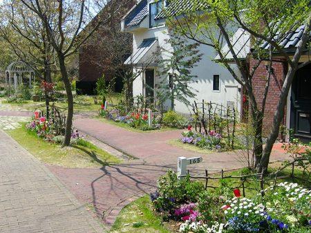 ハウステンボス_コテージの前に咲く花々