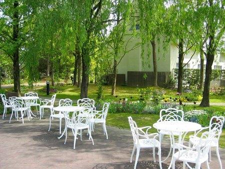 ハウステンボス_フォレストパークの木立