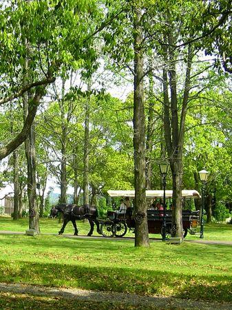 ハウステンボス_木立の中を通る馬車