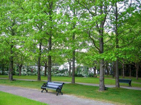 早朝のパレスハウステンボス前庭