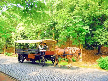 ハウステンボス_レンブラント通りの馬車(水彩風)