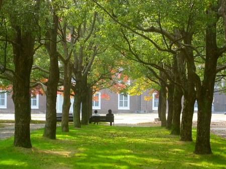 ハウステンボス_色づくパレス前庭の木々