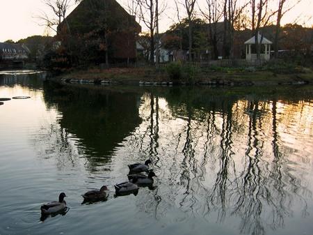 ハウステンボス_湖の夕景