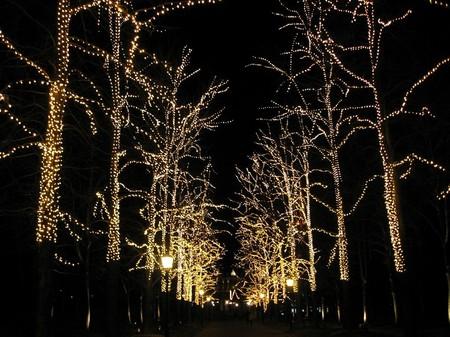 ハウステンボス_光の並木道