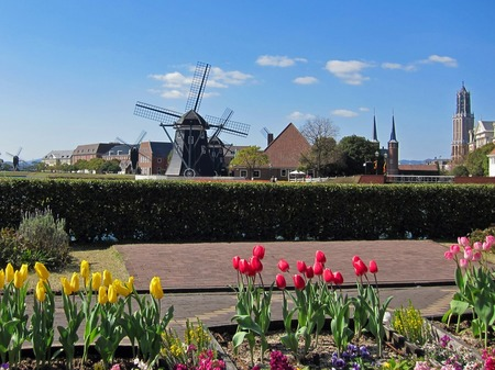 ハウステンボス_チューリップと風車