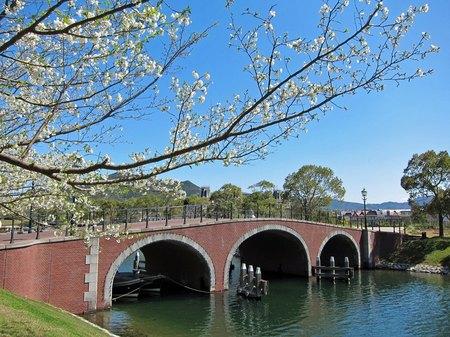 ハウステンボス_ライン運河沿いの桜