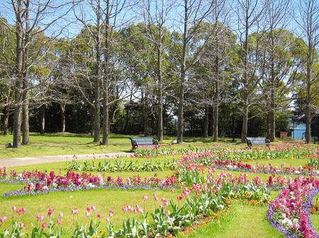 パレスハウステンボス前庭のチューリップ