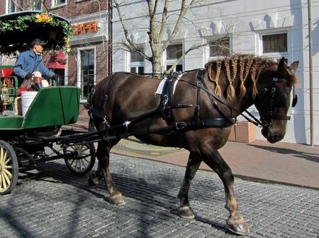 ハウステンボス_レンブラント通りの馬車