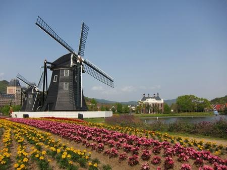 ハウステンボス_キンデルダイクの花畑と風車