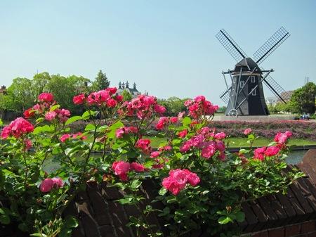 ハウステンボス_ナイアンローデ城のバラ
