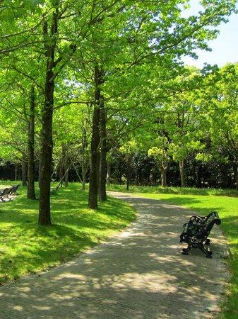 ハウステンボス_新緑の木漏れ日