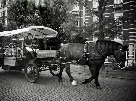 ハウステンボス_モノクロームの街並み