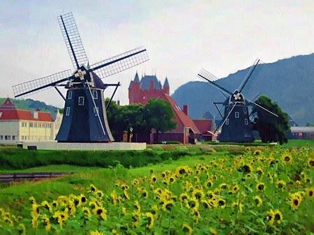 ハウステンボス_ひまわり畑と風車(油絵風)