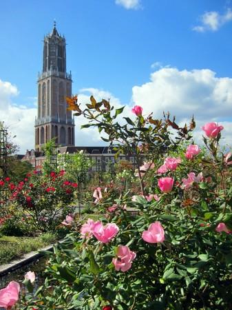 ハウステンボス_アートガーデンに咲く秋のバラ