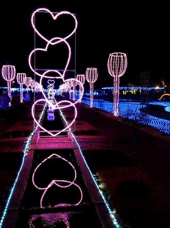 ハウステンボス_2月の「光のアートガーデン」