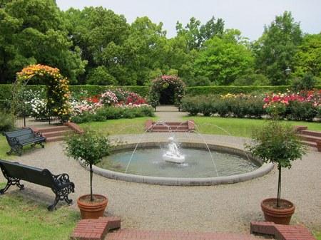 ハウステンボス_パレス前庭のローズガーデン