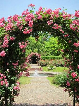 ハウステンボス_初夏のパレス前庭